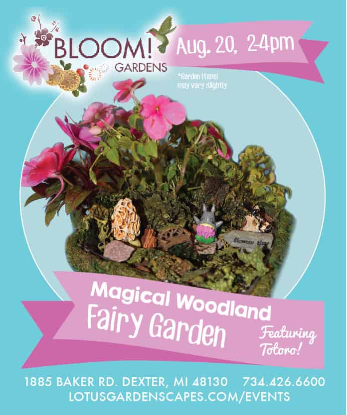 Totoro Magical Woodland Fairy Garden Workshop