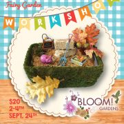 happy harvest fairy garden workshop