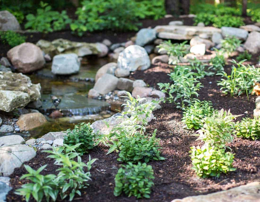 Lotus Gardenscapes -- Waterfall in the Woods -- Creekside Plant Bed -- Stone, Water