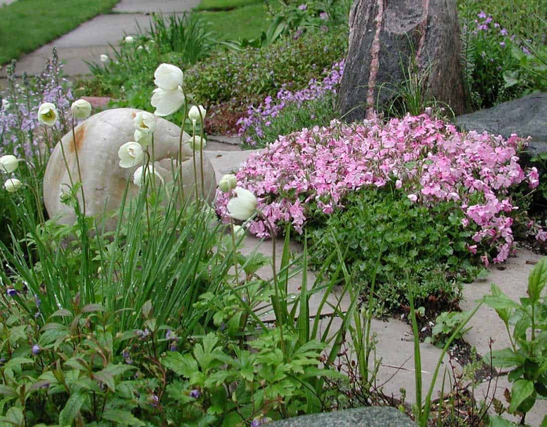 Lotus Gardenscapes -- Gardens -- Pink Wildflowers and Decorative Stone Slabs