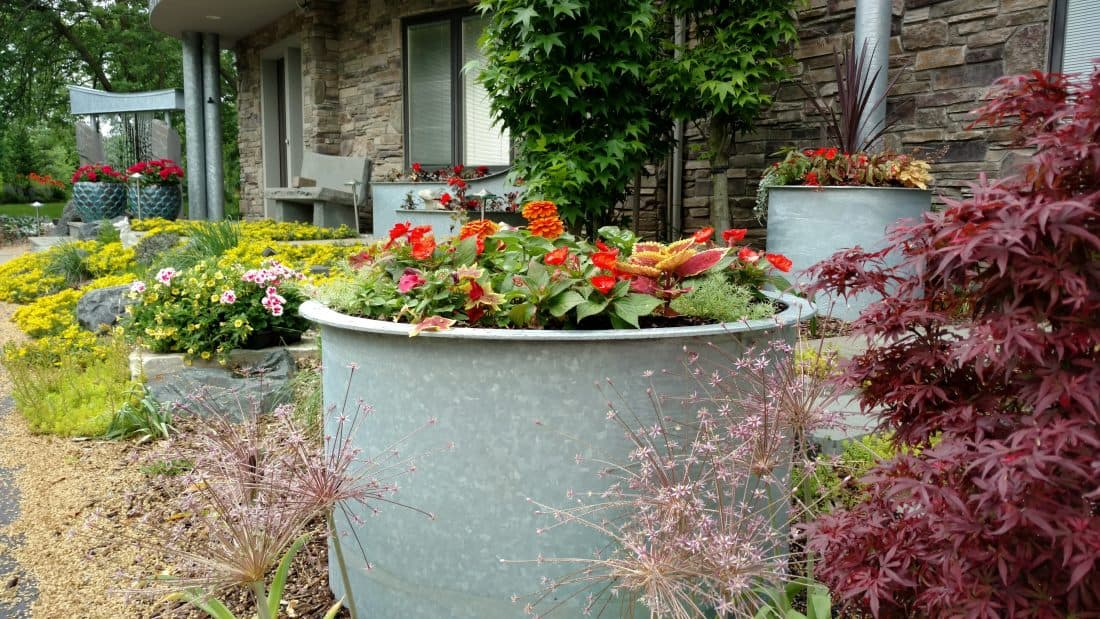 annuals -- seasonal color-- horticultural maintenance -- custom containers